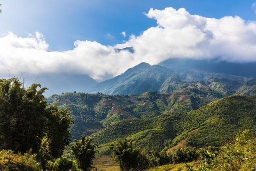 Nature, Landscape, Tree, Mountain, Sky, Sapa, Vietnam