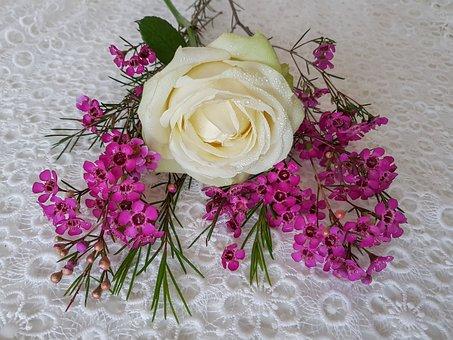 White Rose, Pink Floral, Flower Arrangement, Still Life