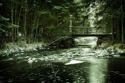 The Nature Of The, Water, River, Woodwork, Three