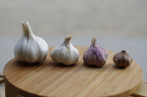 Garlic, Garlic Elephant, Purple Garlic, Black Garlic