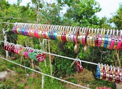 Nature, Tree, Hang, Summer, Dew, Plant, Garden, Color