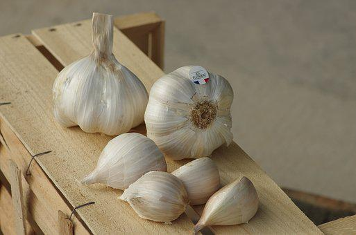 Garlic, Garlic Elephant, Food, Garlic Grown, Kitchen