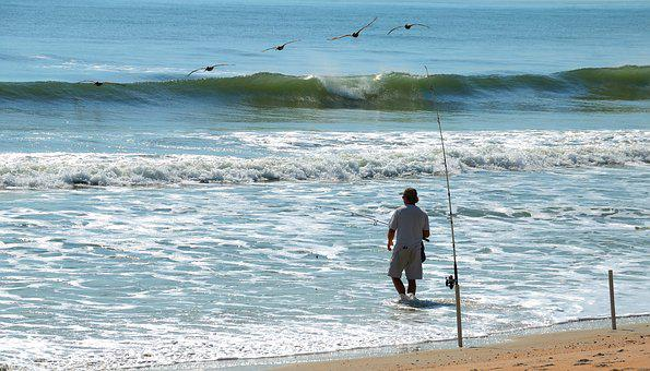 Surf Fisherman, Fishing, Surf, Sport, Fisherman, Ocean