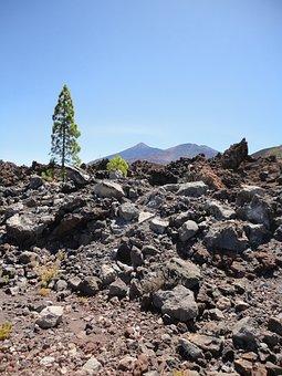 Teide, Tenerife, Canary Islands, Nature, Pico Del Teide