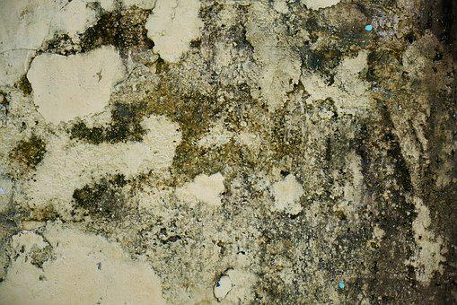 Wall, Texture, Old, Plaster, Cement, Painted, Wallpaper