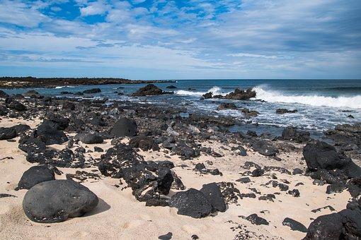 Waters, Sea, Coast, Beach, Rock, Canary Islands