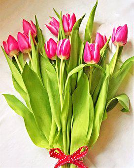 Tulips, Bouquet, Spring, Cut Flowers, Red White Flowers
