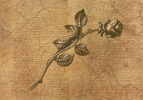 Rose, Background, Old, Nature, Paper, Letters