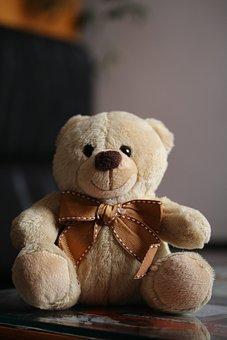Plush, Teddy Bear, Cute, Toy, Brown