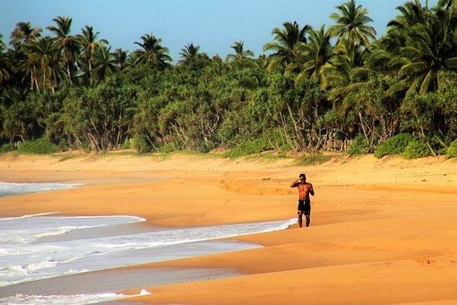 Palm Trees, Jogger, Ocean, Sand, Beach, Water