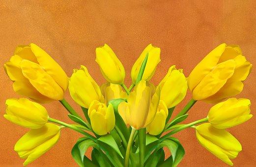 Tulip, Flower, Nature, Plant, Floral, Leaf, Garden