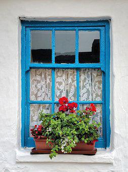 Old, Irish, Cottage, Window, Planter, Flower