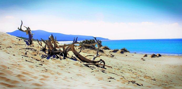 Sand, Beach, Nature, Waters, Sea, Sardinia, Reserve