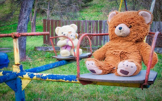 Teddy, Teddy Bear, Park, Soft Toy, Stuffed Animal, Toys