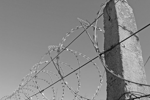 Wire, Barbed Wire, Freedom, Unfreedom, Oppression
