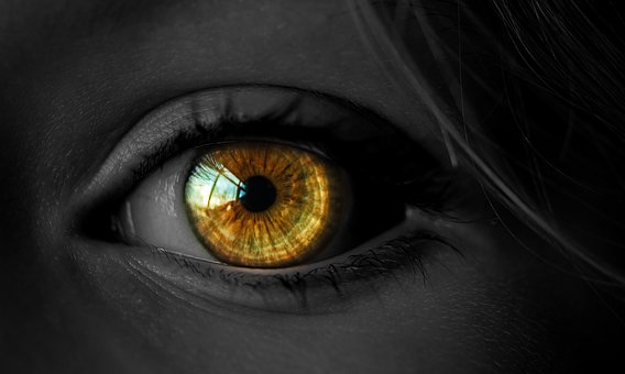 Eyesight, Eyelash, Woman, Eyeball, Face, People, Vision