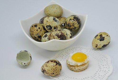 Egg, Quail Egg, Shell, Fried, Cooked, Eat, Food