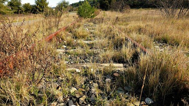 Transport, Landscape, Outdoor, Plant, Rail, Steel