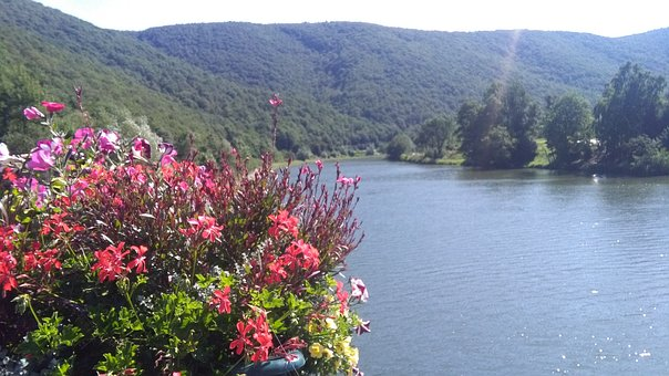 Nature, Landscape, Body Of Water, Flower, Hill, River