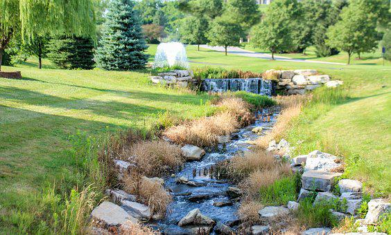 Nature, Creek, Grass, Water, Landscape, Summer