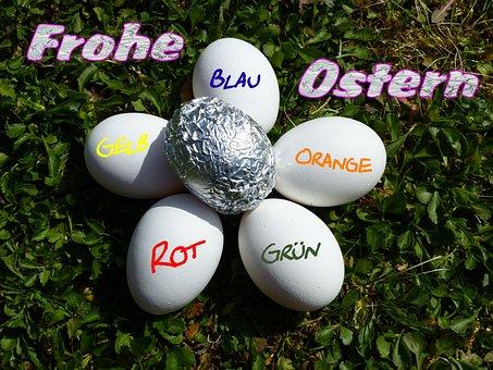 Egg, Easter, Easter Egg, Easter Nest, Funny