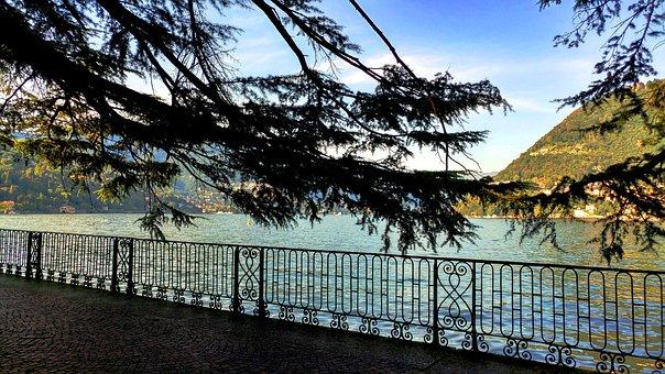 Nature, Tree, Landscape, Wood, Sky, Lake Como, Passage