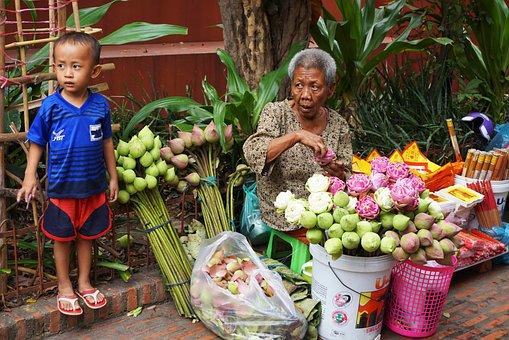 People, Market, Basket, Sell, Child, Cambogia, Lotus