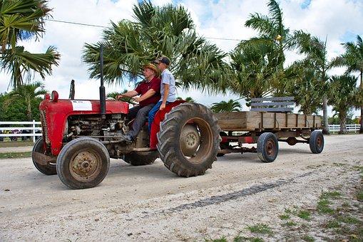 Farm Equipment, Antique, Tractor, Equipment, Old