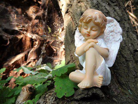Angel, Thinking Angel, Nature, Trunk, Angel In Nature