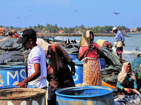 Fish Market, Boiling Hot, The Person, Poverty, Work