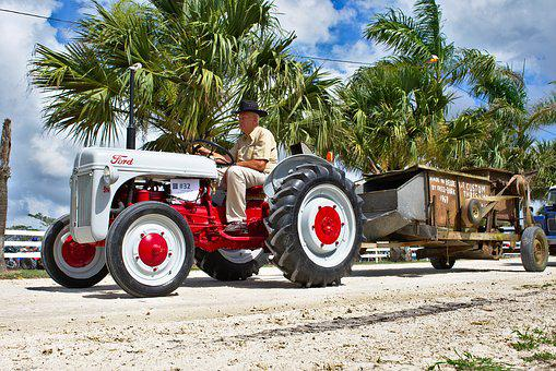 Tractor, Antique, Old, Ford, Red, Farmer, Agriculture