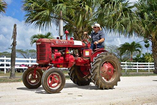 Farmer, Shifting, Tractor, Old, Antique, Farm