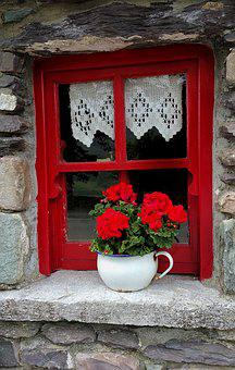 Old, Irish, Cottage, Window, Planter, Pot, Flower