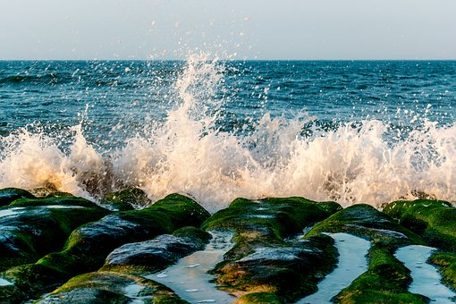 Water, Sea, Ocean, Seashore, Wave, Surf, Beach, Nature