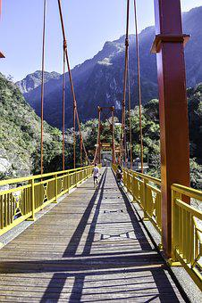 Travel, Nature, Wood, Taroko National Park, Taiwan