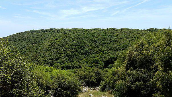 Nature, Panoramic, Landscape, Tree, Outdoors, Hill