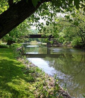 Water, Nature, Tree, Wood, River, Landscape, Scene