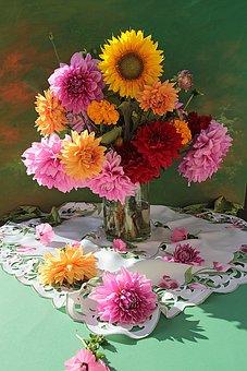 Flower, Plant, Nature, Floral, Bouquet, Color, Flowers