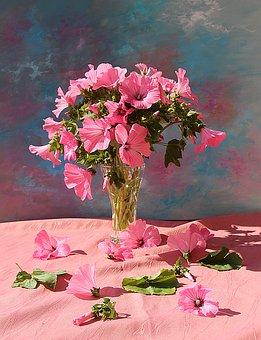 Flower, Plant, Nature, Leaf, Garden, Summer, Flowers