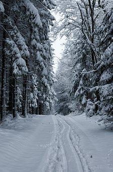 Snow, Winter, Wood, Cold, Landscape, Ice, Nature