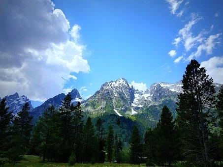 Mountain, Panoramic, Nature, Wood, Snow, Tetons