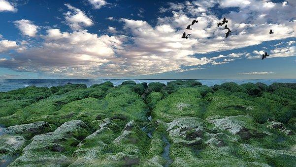 Nature, Water, Sky, Landscape, Panoramic, Beautiful