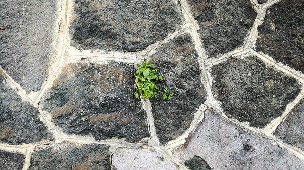 Wallpaper, Stone's, Structure, Nature, Rock, Lava
