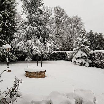 Winter, Snow, Tree, No Person, Season, Landscape