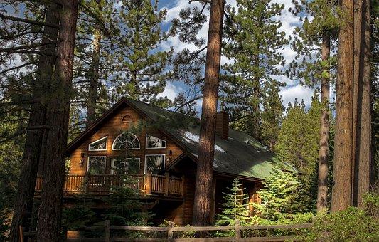 Wood, Tree, Nature, Outdoor, Wooden, Cabin