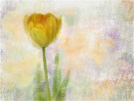 Paper, Desktop, Pastel, Abstract, Flower, Canvas, Art