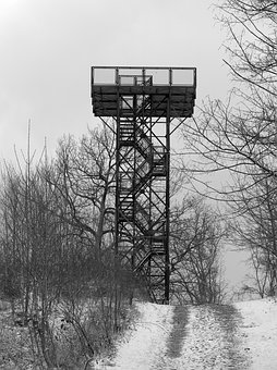 Nature, Observation Tower, Forest, Recovery, Rest