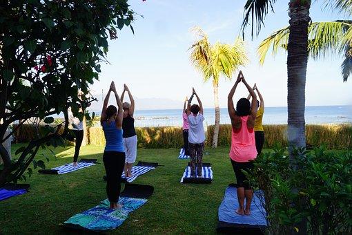 People, Leisure, Tree, Lifestyle, Adult, Recreation