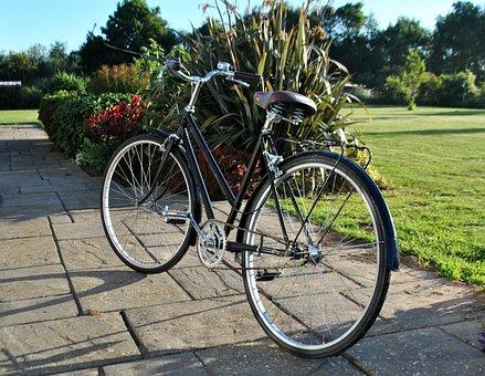 Wheel, Bike, Summer, Bicycle, Cycling, Outdoors