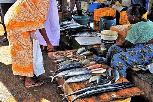 Fish Market, People, Sell Off, Fish, Bazaar, Trade